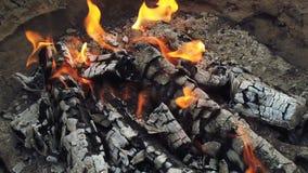 """Bliski widok na Å›wiecÄ…cy wÄ™giel drzewny i pÅ'omieÅ"""" w grillu grillowym zdjęcie wideo"""