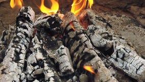 Bliski widok na świecący węgiel drzewny i płomień w grillu grillowym zbiory wideo