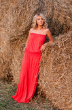 blisko blondie piękny haystack Zdjęcie Royalty Free