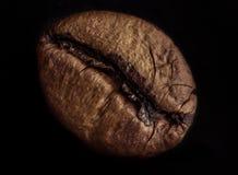 blisko fasolę kawa wystrzelona Fotografia Stock