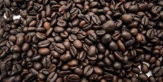 blisko fasolę kawa wystrzelona Fotografia Royalty Free