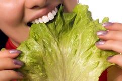 blisko jedzenie dziewczyny liści sałatki, Fotografia Royalty Free