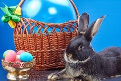 Blisko kosza z balonowym królikiem i wazą jajka Zdjęcie Royalty Free