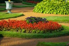 blisko kwiat łóżka Petersburgu święty Rosji, Obraz Royalty Free