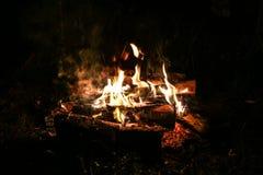 blisko noc palą ognisko w las Zdjęcie Stock