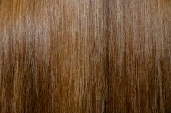 blisko włosy strzały struktura, Obrazy Stock