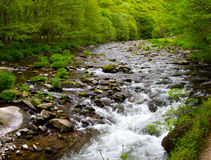 blisko watersmeet Devon lynmouth Obraz Stock