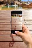 Blisko wręcza mienie telefon komórkowego z fotografii kamery trybem na ekranie wizerunek kobieta Cropped wizerunek odciski stopy  zdjęcia stock