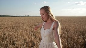 Blissful beautiful woman walking in cereal field stock video
