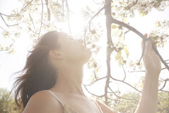 Blissful Light. Beautiful young woman smelling the blossom of a blooming tree under bright rays of sunlight Royalty Free Stock Photo