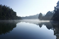 Blissful morning. Misty morning reflection in the winter Stock Images