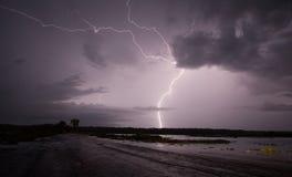Blitz über tropischem Sumpfgebiet Lizenzfreie Stockbilder
