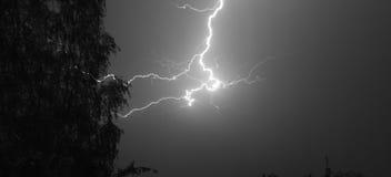 Blitz: Blitzbolzen, lokalisiert gegen schwarzen Boden Stockfotos