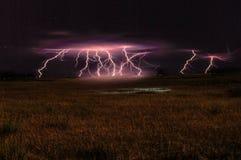 Blitz in den Sumpfgebieten Lizenzfreie Stockbilder