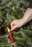 Blitz die Kerzen am Weihnachtsbaum Lizenzfreies Stockfoto