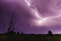 Blitz im Himmel nachts Lizenzfreie Stockfotos