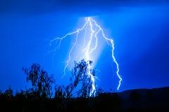 Blitz und Baum Stockfoto