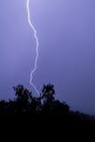 Blitz und ein Baum mit dunkelblauem Himmel Lizenzfreie Stockfotografie