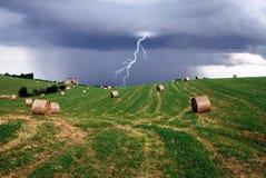 Blitz und Hafer Stockbilder