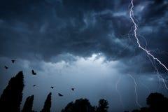 Blitzbolzen auf drastischem Himmel Stockbild