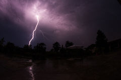 Blitzbolzen hinter Bäumen Stockbilder