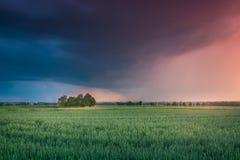Blitze auf Lublin während ein der Stürme im Jahre 2017 Stockfoto
