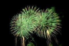 Blitze von Feuerwerken der grünen Farbe Lizenzfreie Stockbilder