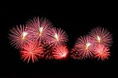 Blitze von Feuerwerken der rosa und roten Farbe Stockbild