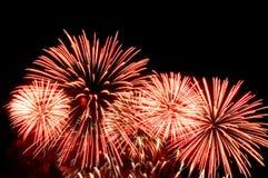 Blitze von Feuerwerken der rosa und weißen Farbe Stockfoto