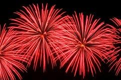 Blitze von Feuerwerken der roten Farbe Stockfoto