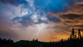 Blitzschlag über dem Wald Stockfoto