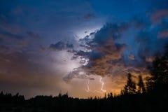 Blitzschlag über dem Wald Stockbild