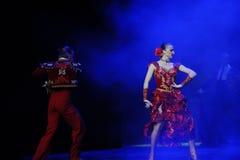 Blitzschnell-spanischen Flamenco-d Österreichs Welttanz Lizenzfreie Stockfotos