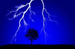 Blixt som slår nära Silhouetted träd Arkivbilder