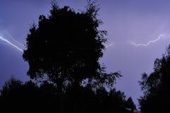 Blixtslag på ett mörker - blå himmel över skogkonturn royaltyfria bilder