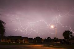 blixtspindel Arkivfoto