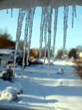 Blizzard of 2010 - icicles Stock Image