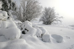 Blizzard. Morning after a blizzard in winter Stock Photo