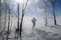 blizzard imagem de stock royalty free