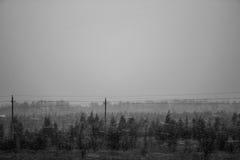 blizzard Royalty-vrije Stock Foto's