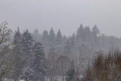 blizzard Royalty-vrije Stock Afbeeldingen