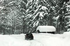 Blizzard auf den österreichischen Alpen Stockbilder