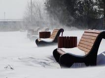 Blizzard auf der Parkgasse Lizenzfreies Stockbild