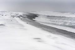 Blizzard auf einem Strand des Pazifischen Ozeans mit schwarzem Sand Lizenzfreie Stockfotografie