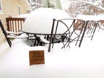 Blizzard-Aufmerksamkeit Snowlovers Stockfoto