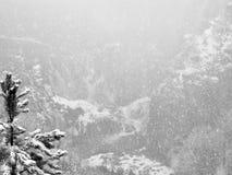 Blizzard in Berge Stockfotografie