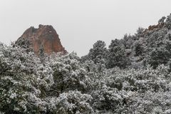 Blizzard bij tuin van de rotsachtige bergen van godencolorado springs stock foto's
