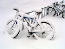 Blizzard Bikes Royalty Free Stock Photo