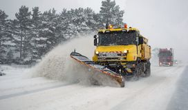 Blizzard da neve Foto de Stock