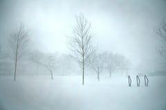 Blizzard de Boston Fotos de Stock Royalty Free